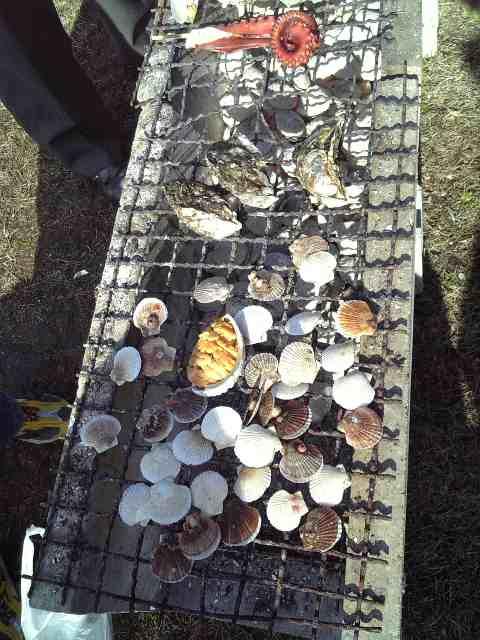 松島の牡蠣まつり
